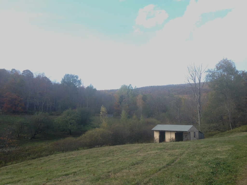 A developing riparian buffer runs in the valley behind the shed.