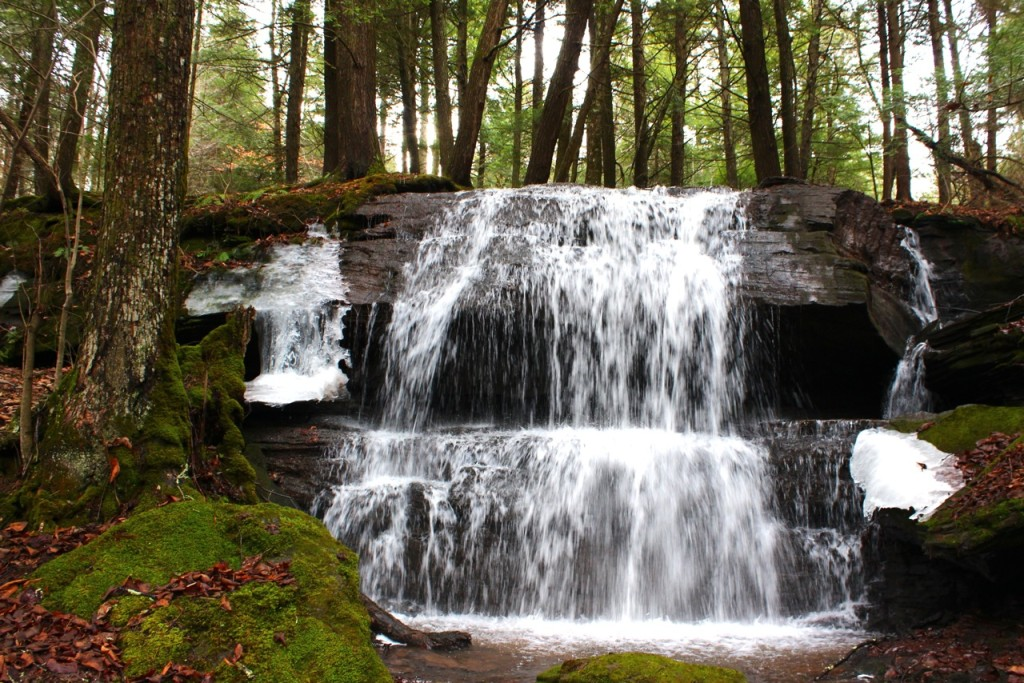 © Mountain Girl Photography & Design Day 1 of The Seven Days of Waterfalls: Cape Horn Road Falls)