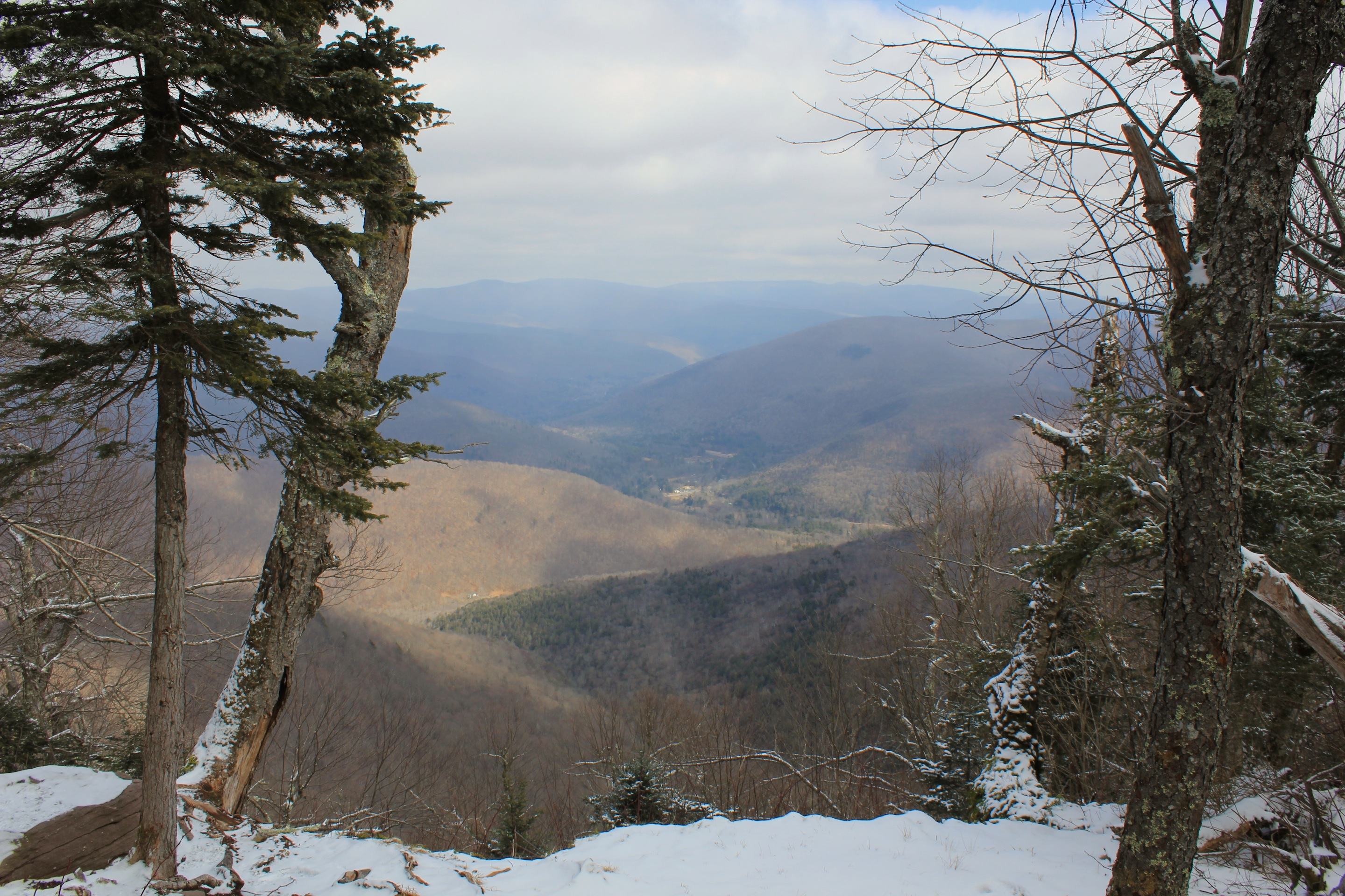 Balsam mountain upstate dispatch for Balsam mountain